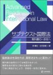 『サブテクスト国際法』